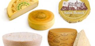 formaggio nella ristorazione