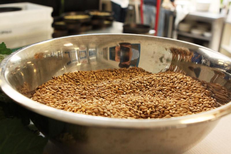 ingredienti della birra antoniana