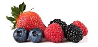 Sicurezza alimentare frutti di bosco