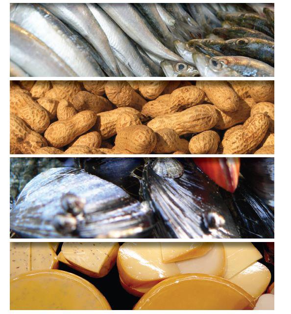 etichetta alimentare nel food