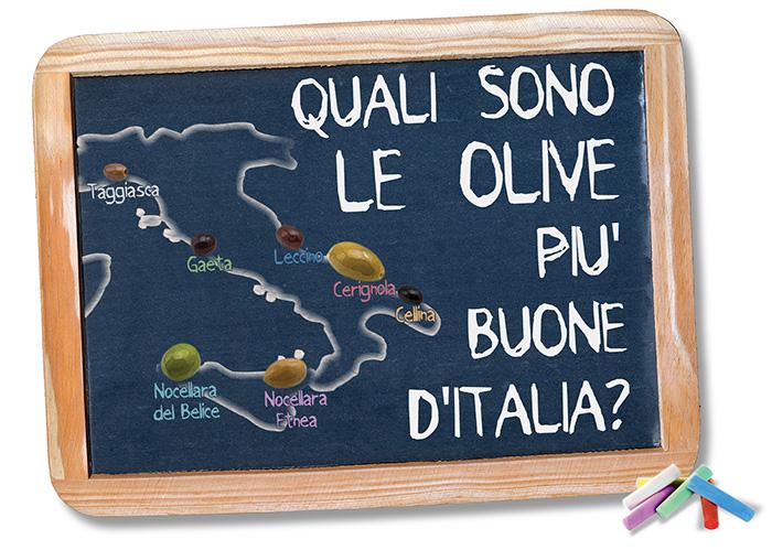 Le olive in Italia