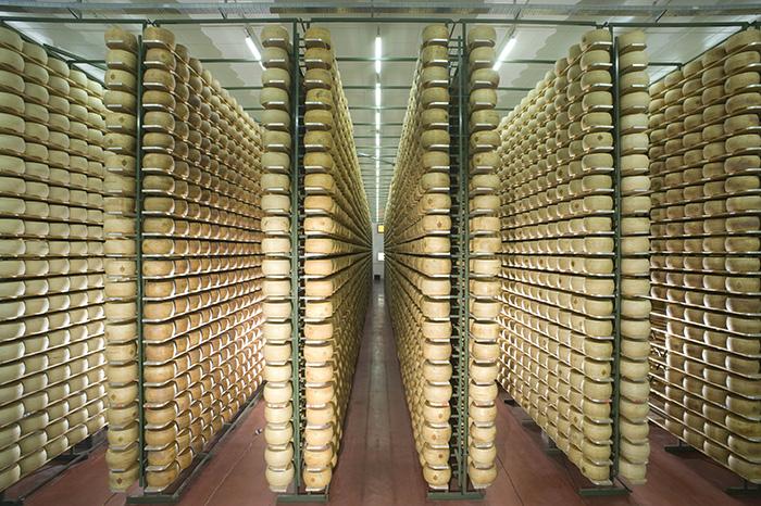 formaggi stagionati agriform
