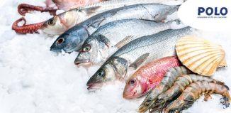 prodotti-ittici-surgelati