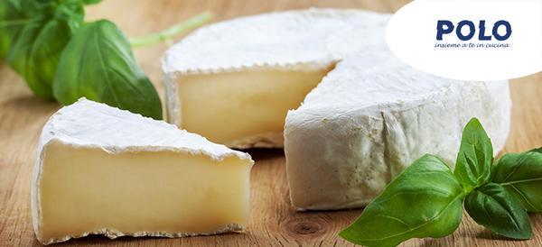 camembert-formaggio-ristorazione