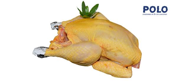 pollo-ruspante-genuino-ristorazione